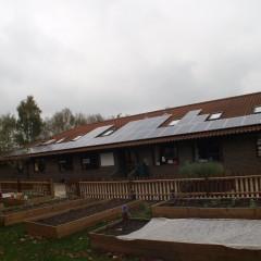 Birchwood roof with solar panels