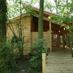 Suffolk Wildlife Trust Bradfield Woods